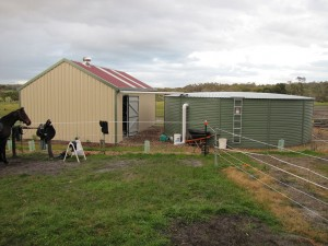 Shed and Watertank