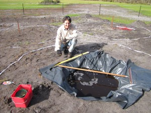 Filling the Frogpond