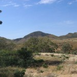 Scenery in the Flinders Ranges